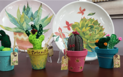 7 increíbles cactus para regalar ¡en cualquier ocasión!