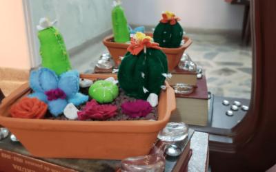 Hermoso mini jardín con cactus en fieltro.